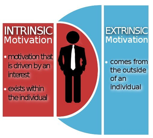 literature review on intrinsic and extrinsic factors of motivation